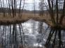 Jezioro Leśne :: Do jeziora Leśnego