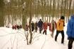 Powitanie Nowego Roku - Puszcza Zielonka :: Wśród drzew i śniegu