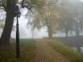 Winna Góra 21.10.2012 :: Winna Góra
